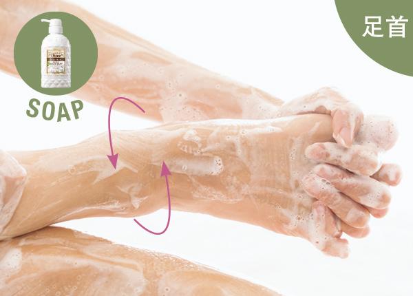 足首(SOAP)